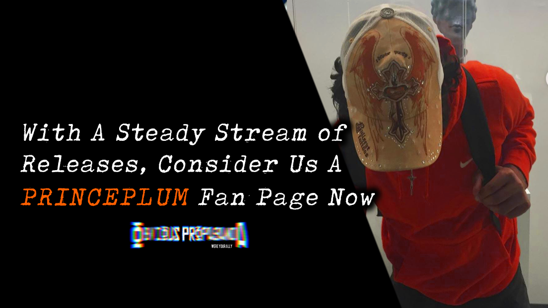 With A Stream of Steady Releases, Consider Us A Prince Plum Fan Page From Here OnOut